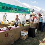 Lollapalooza 2016: el costado verde del festival