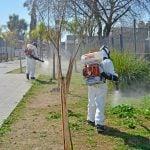 Retomaron los trabajos de prevención contra el Dengue en San Fernando