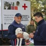 Castración y vacunación gratuita de mascotas en San Isidro durante Octubre
