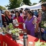 Se realizó una jornada de intercambio de semillas y concientización ambiental